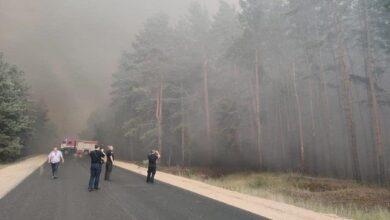 Photo of Може бути і підпал: чому горять ліси на Луганщині
