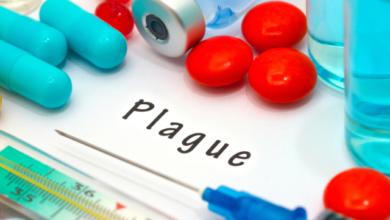 Photo of Бубонна чума: симптоми, лікування та як передається