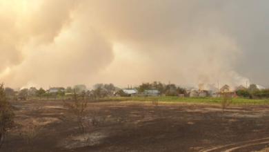 Photo of Пожежа у Сєвєродонецьку: горить трава у районі Чистого озера
