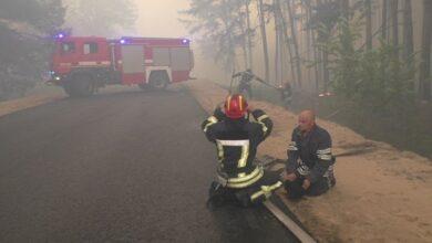 Photo of Пожежу на Луганщині не загасили: досі горить лісова підстилка