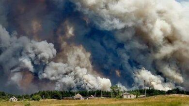 Photo of До гасіння пожеж під Сєвєродонецьком залучили ЗСУ, Нацгвардію та ДСНС