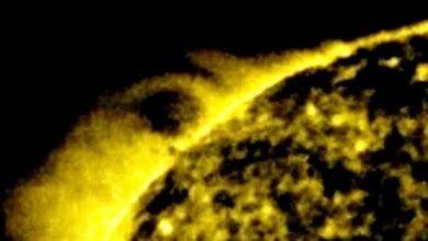 Photo of НЛО на знімку NASA: біля Сонця виявили сферу в 25 разів більшу за Землю