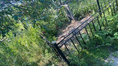 Photo of Вбили та поховали на місцевому кладовищі: у Вишгороді до смерті побили чоловіка