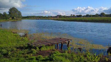 Photo of Таємниче Ніжин-озеро. Фото