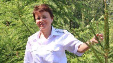 Photo of Працівниці Ніжинського лісгоспу присвоїли почесне звання