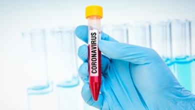 Photo of Свинець проти Covid-19: у США підліток знайшла метод боротьби з вірусом