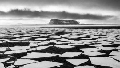 Photo of В Арктиці до 2035 року може повністю зникнути лід