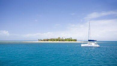 Photo of Робота мрії! В Австралії пропонують жити на острові, але є нюанс