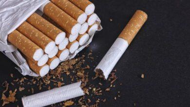 Photo of Затримали українців і поляків: у Німеччині викрили нелегальну тютюнову фабрику