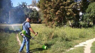 Photo of У Ніжині оголошують боротьбу з амброзією!