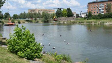 Photo of У Носівці розчистили річку та планують облаштування зони для відпочинку. Фото