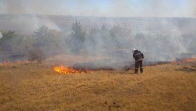 Photo of На Луганщині під час гасіння пожежі стався вибух – постраждав рятувальник