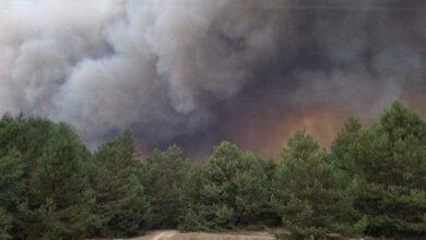 Photo of Пожежа на полігоні в Дівичках: палає ліс, вогонь гасять 120 людей