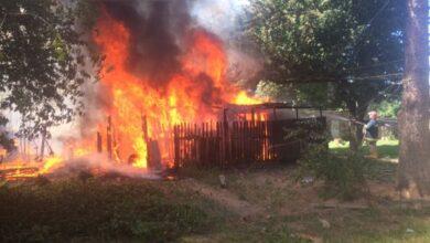 Photo of Дві пожежі на Ніжинщині: горіла суха трава і господарча будівля