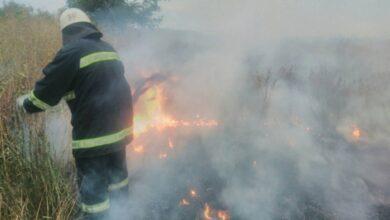 Photo of По дві пожежі у Ніжині та районі: горіло сміття і суха трава
