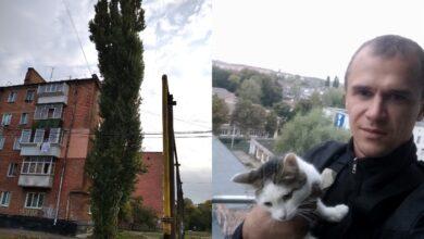 Photo of Масштабна операція з порятунку: в Ніжині кішка 4 дні просиділа на верхівці тополі