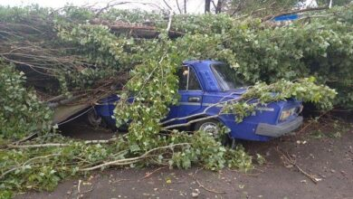 Photo of Ураган під Херсоном повалив майже 50 дерев і зірвав дах школи