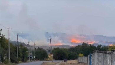 Photo of За вихідні на Донбасі зафіксували дві великих лісові пожежі