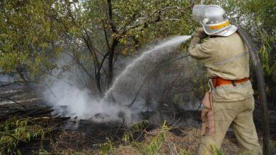 Photo of Пожежу в Луганській області гасять вже п'ятий день