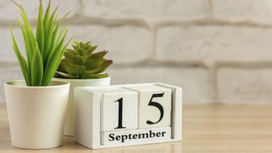 Photo of Міжнародний день демократії: яке свято сьогодні, 14 вересня