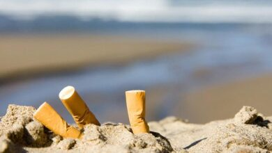 Photo of 25% курців у світі кидають недопалки на землю і вважають, що це нормально – дослідження