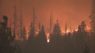 Photo of Небезпечний дим від пожеж у США досяг північної Європи