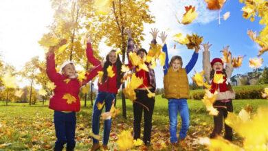 Photo of Осінні канікули у школах Ніжина розпочнуться вже цього тижня