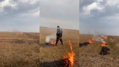 Photo of Підпалював поле, а потім почав гасити: під Ніжином чоловік попався на гарячому