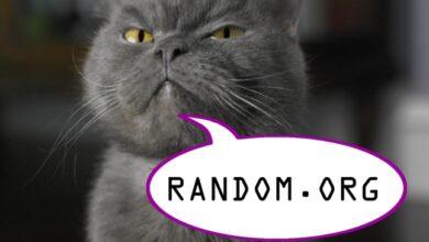 Photo of Голосування припинено! Переможця фотоконкурсу визначить random.org