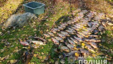 Photo of На Чернігівщині бракон'єри виловили більше 80 голів різної риби