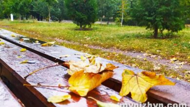 Photo of Осінь, як вона є. Фото