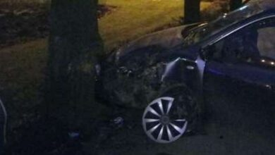 Photo of У Ніжині Mazda в'їхала в дерево: постраждало троє осіб