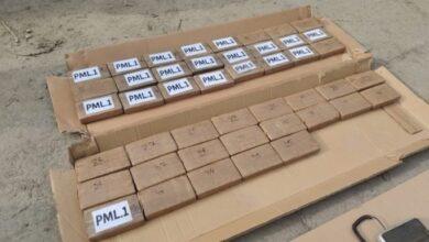 Photo of Сховали в бананах: на Одещині виявили 50 кг контрабандного кокаїну