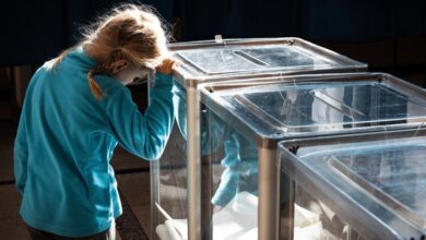 Photo of Як проголосувати на місцевих виборах у Києві