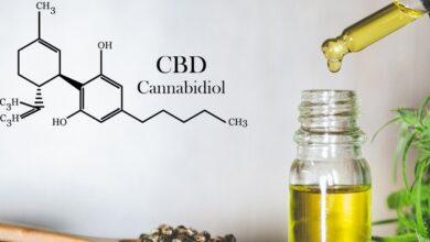 Photo of Медичний канабіс є альтернативою для восьми наркотичних препаратів – експерт