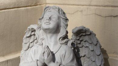 Photo of День ангела Зінаїди – привітання у віршах, СМС і картинках