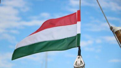 Photo of Втручання у вибори: МЗС вручило послу Угорщини ноту протесту