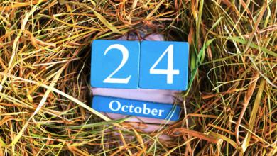 Photo of День ООН: яке свято сьогодні, 24 жовтня