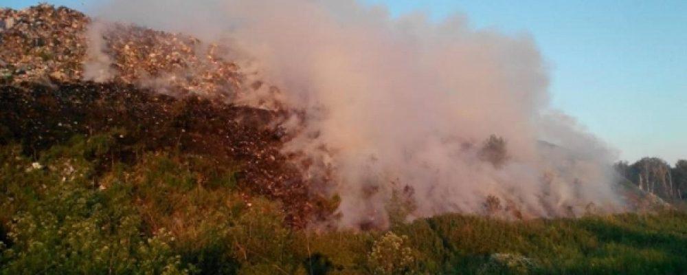 На Чернігівщині загорілося сміттєзвалище [Фото]